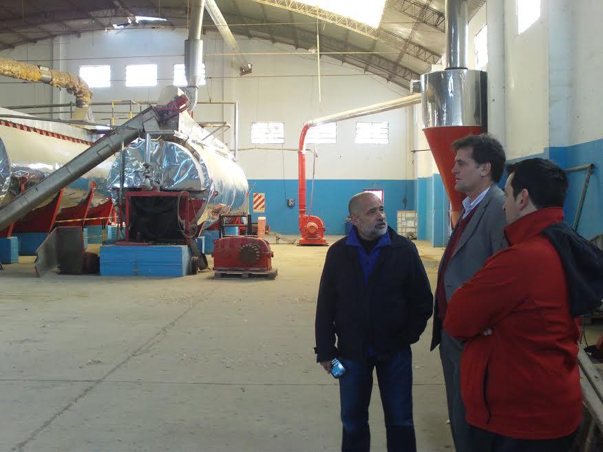Los desechos de pescado que se generan en Rawson podrían procesarse en una planta de Puerto Madryn